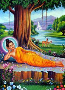 Gautam Buddha Wallpaper Download